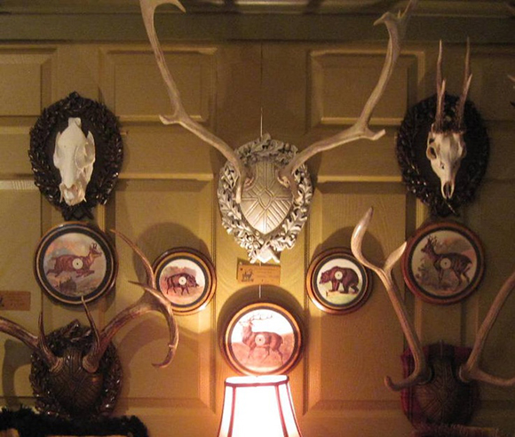 Hunting trophies, Antlers on the wall, Ralph Lauren look