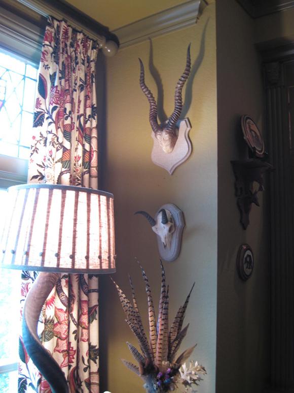 Mounted Antlers, antler decor, antlers in Design, hunting trophies