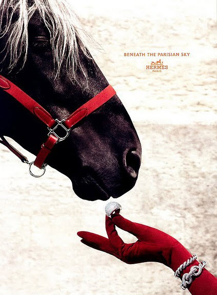 hermes ad horse jewels
