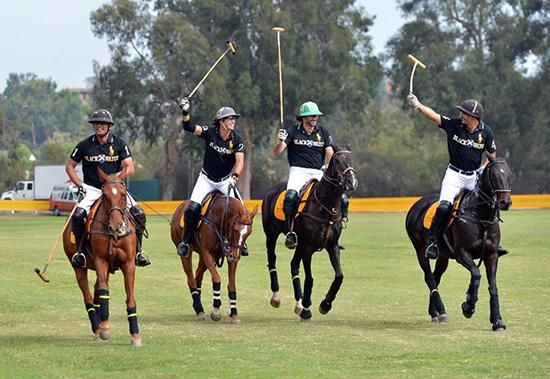 Veuve Polo Team