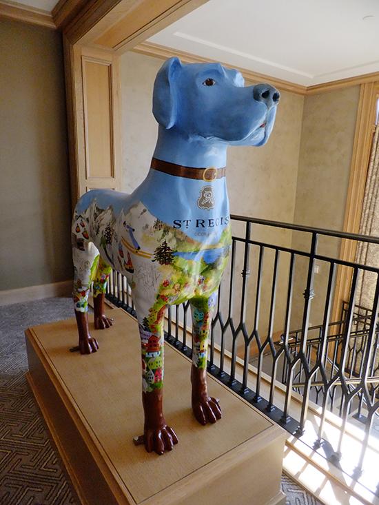St Regis Dog