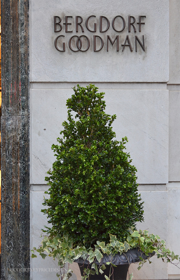 Bergdorf Goodman on www.CourtneyPrice.com