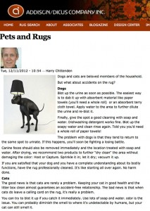Rug Care Advice for Pet Owners