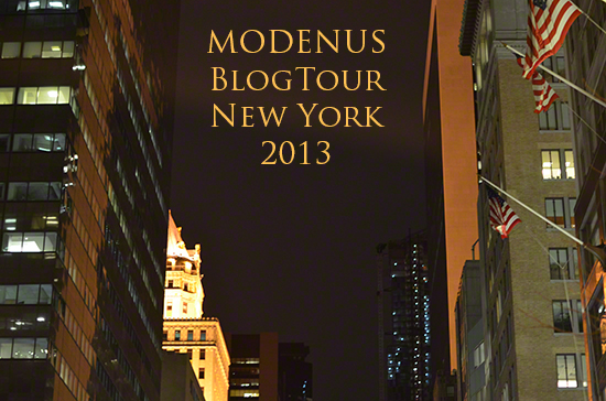Blog Tour New York, New York at night
