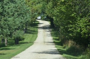 Ontario country roads