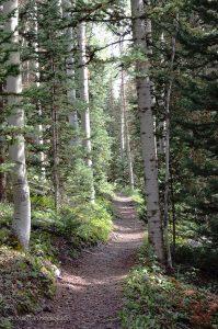 hiking trail, telluride trails