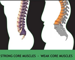 stong core, weak core, flexed posture, gluteal amnesia, blogger butt, too much sitting, bad posture, healthy office,