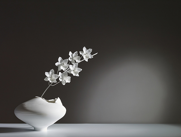 Cymbidium Ming Vase, lighting as art, Jeremy Cole art