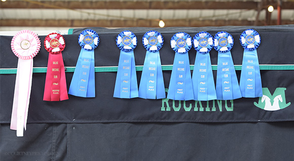 Dressage_ribbons, dressage, on www.CourtneyPrice.com