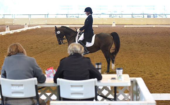 dressage_judges, Dallas Horse Show, dressage, on www.CourtneyPrice.com
