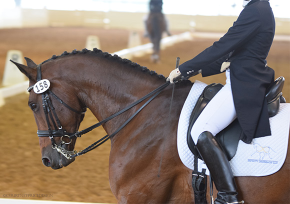 dressage_posture, dressage, on www.CourtneyPrice.com