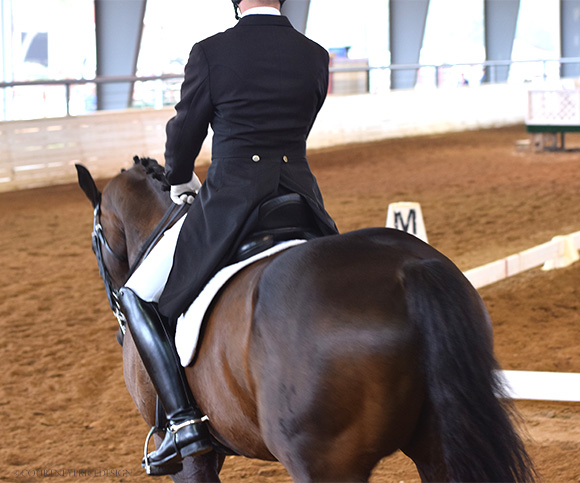 equestrian_event, dressage, on www.CourtneyPrice.com