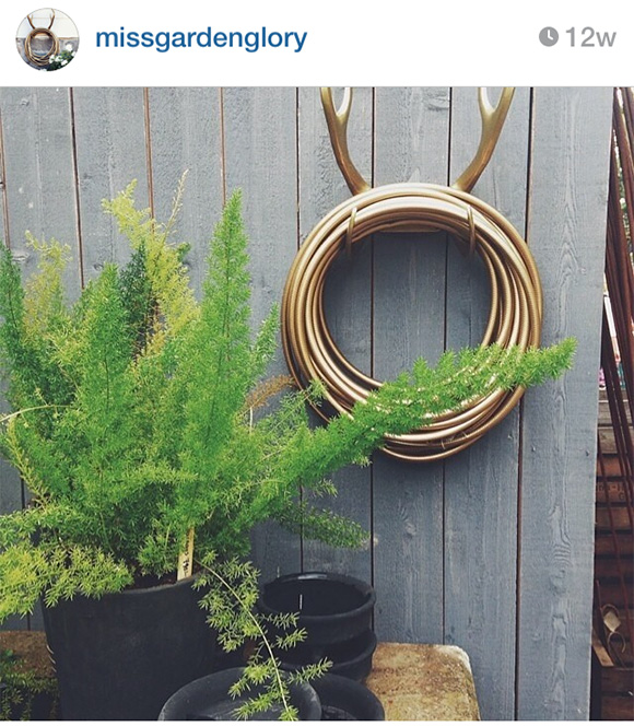 Nice Rack, garden glamor on www.CourtneyPrice.com