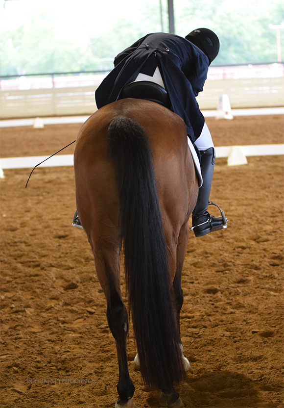 Horse and rider bond, dressage, on www.CourtneyPrice.com