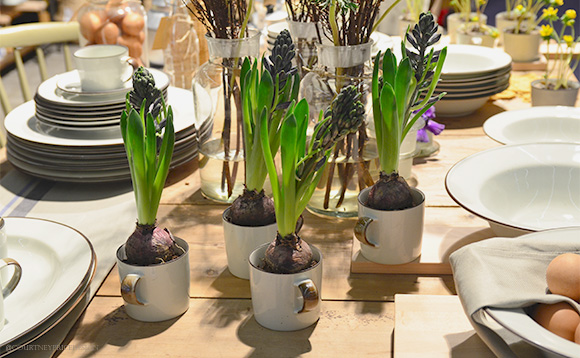 bulbs In Mugs,Dining Trends on www.CourtneyPrice.com